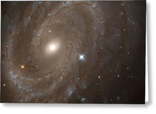Interstellar Space Greeting Cards - Ngc 4603 Greeting Card by Celestial Images