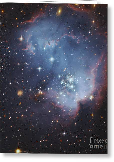 Starforming Greeting Cards - Ngc 602, Starforming Complex Greeting Card by Robert Gendler