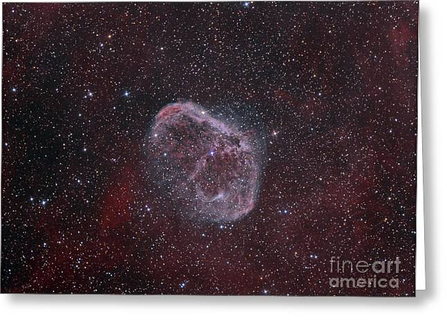 Interstellar Space Greeting Cards - Ngc 6888, The Crescent Nebula Greeting Card by Reinhold Wittich