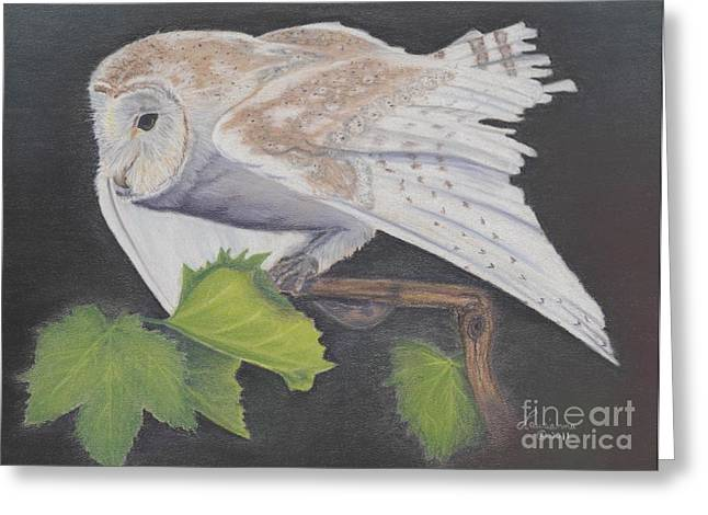 Grape Leaves Pastels Greeting Cards - Nght Owl Greeting Card by Laurianna Taylor