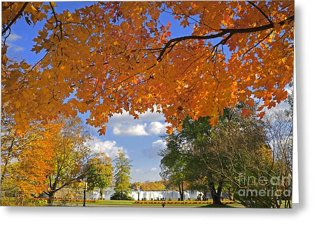People In Autumn Greeting Cards - Niagara Parkway Greeting Card by Charline Xia