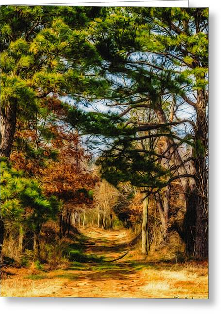 Barry Styles Greeting Cards - Nice Day For a Walk Greeting Card by Barry Jones