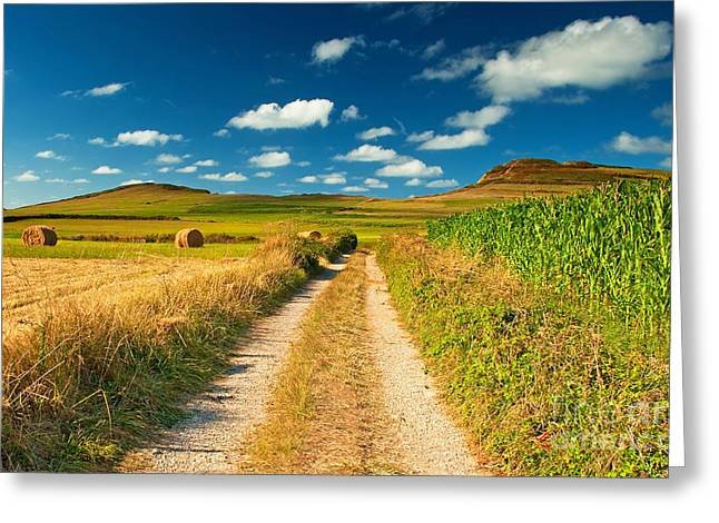 Nice landscape summer Greeting Card by Boon Mee