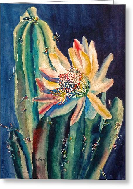 Night Blooming Cactus Greeting Card by Carolyn Jarvis