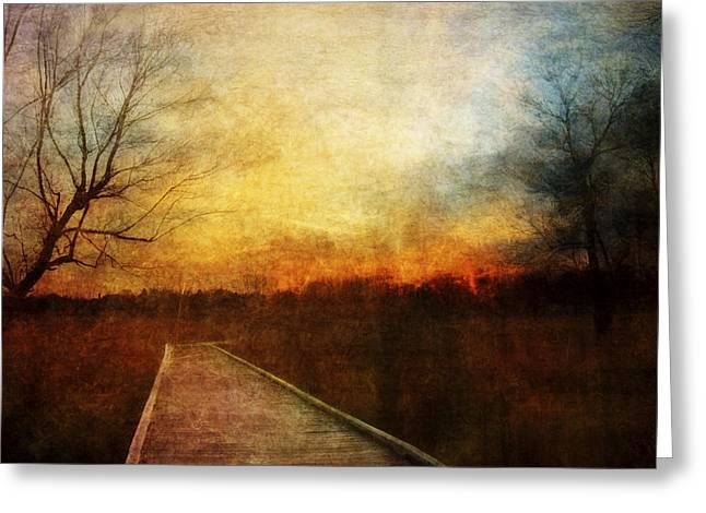 Night Falls Greeting Card by Scott Norris