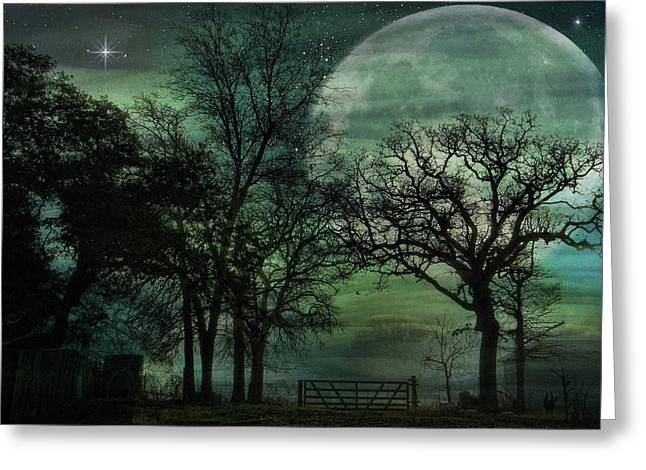 Digipho333 Studio Greeting Cards - Night in the Land of LunaSea Greeting Card by Shannon Story