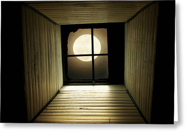 Moon Greeting Cards - Night Light Greeting Card by Amy Tyler