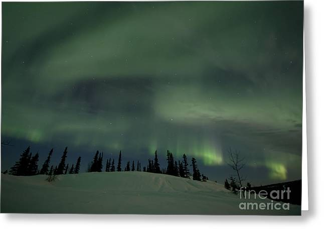 Northern Polar Lights Greeting Cards - Night Lights Greeting Card by Priska Wettstein