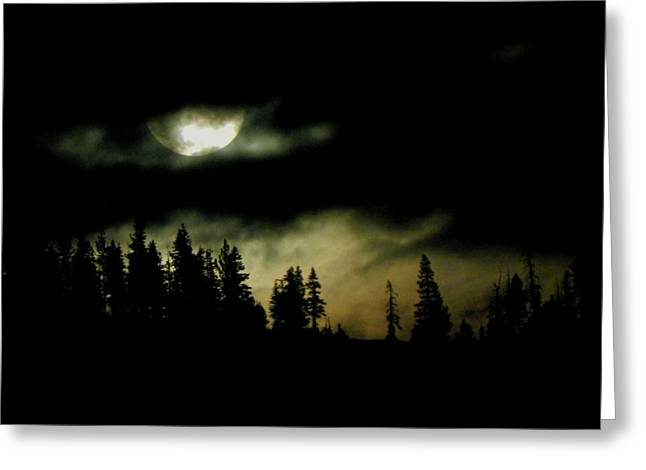 Solstice Framed Prints Greeting Cards - Night of the Moon Greeting Card by Leah Moore