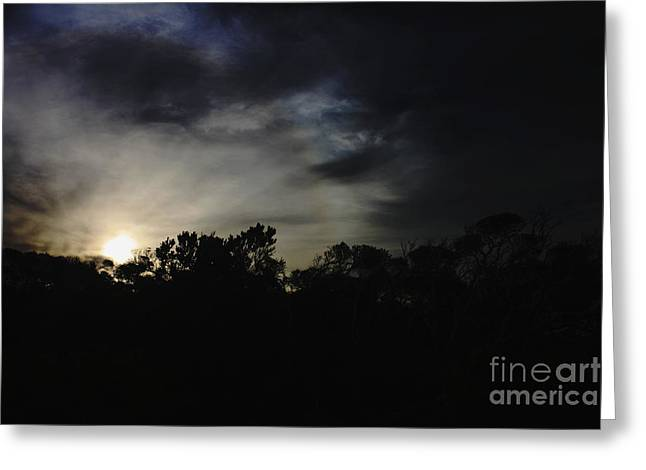 Sundet Greeting Cards - Night on Bells Beach I Greeting Card by Amanda Lee Tzafrir