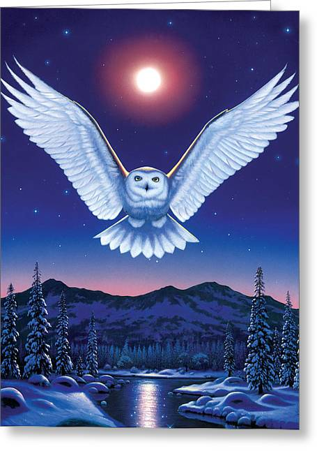 Night Owl Greeting Card by Chris Heitt