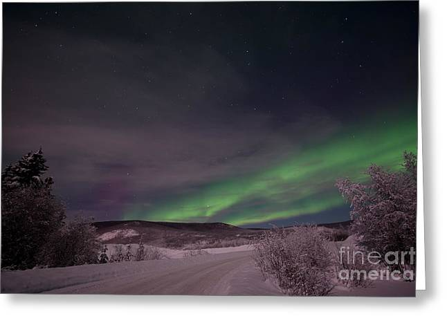 Pink Road Greeting Cards - Night Skies Greeting Card by Priska Wettstein