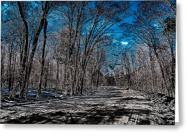 Surreal Landscape Greeting Cards - Night Sky in the Adirondack Mountains Greeting Card by David Patterson