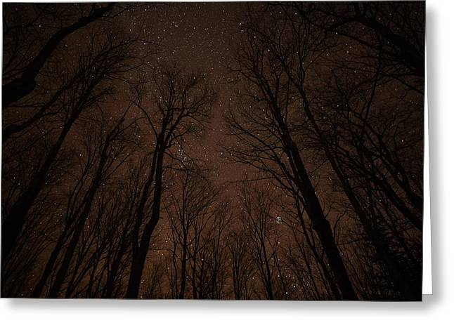 Recently Sold -  - Ghostly Greeting Cards - Night Sky Magic Greeting Card by Kathryn Lund Johnson