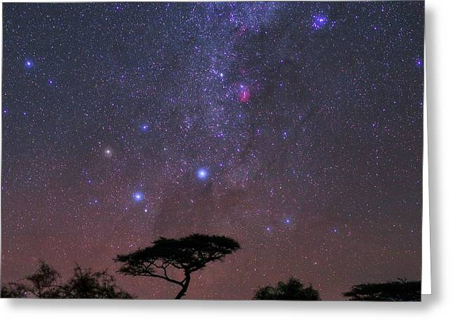 Night Sky Over Kenya Greeting Card by Babak Tafreshi