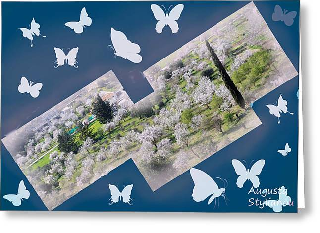 Star Valley Greeting Cards - Night Spring and Butterflies Greeting Card by Augusta Stylianou