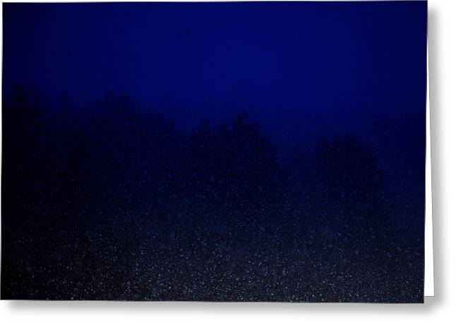 Snowy Night Greeting Cards - Night Storm Greeting Card by Mim White