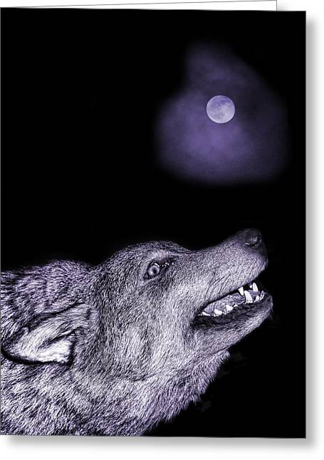Night Wolf Greeting Card by Angel Jesus De la Fuente