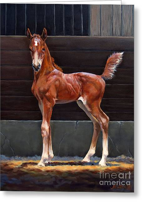 American Saddlebred Greeting Cards - Nightlight II Greeting Card by Jeanne Newton Schoborg