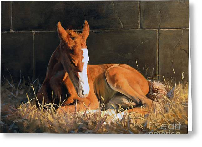 Quarter Horses Paintings Greeting Cards - Nightlight Greeting Card by Jeanne Newton Schoborg