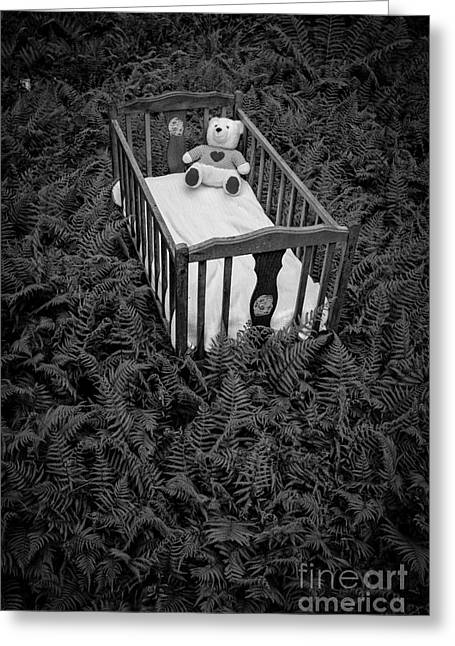 Black Teddy Greeting Cards - Nightmares and Fairy Tales Greeting Card by Edward Fielding