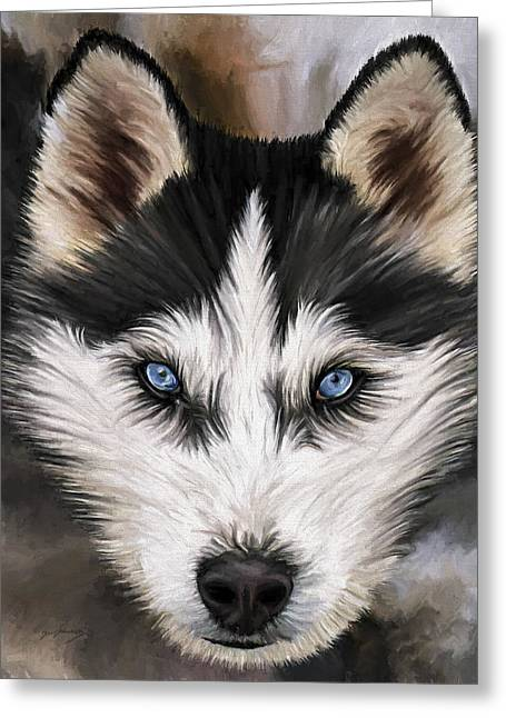 Siberian Husky Dog Art Greeting Cards - Nikki Greeting Card by David Wagner