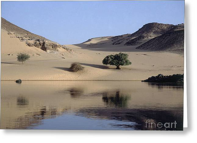 River Nile Greeting Cards - Nile River In Egypt Greeting Card by Paul Stepan