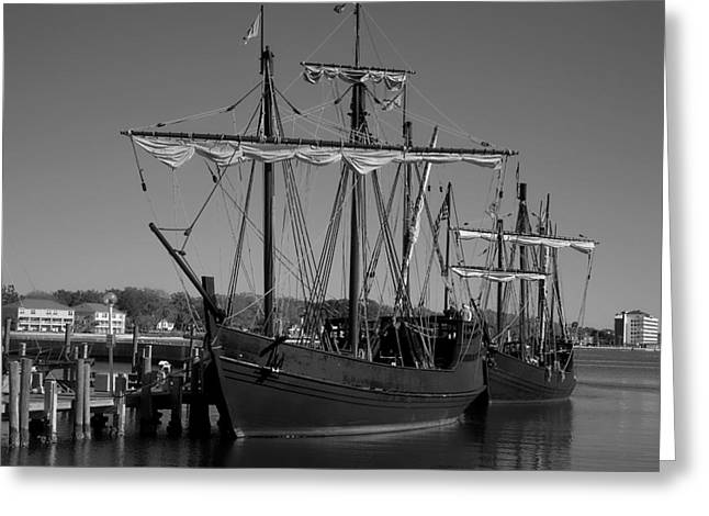 Pilgram Greeting Cards - Nina and Pinta in Black and White Greeting Card by Debra Forand