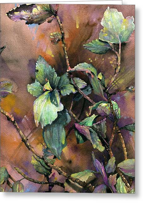 Indiana Flowers Paintings Greeting Cards - Ninebark Greeting Card by John Christopher Bradley