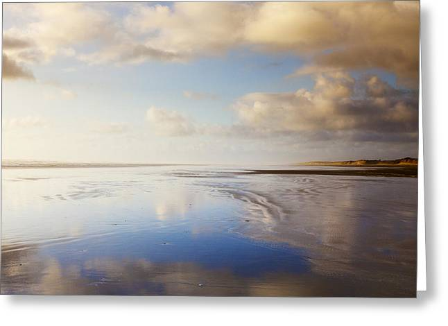 90 Mile Beach Greeting Cards - Ninety Mile Beach Northland New Zealand Greeting Card by Colin and Linda McKie