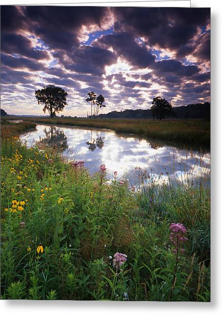 Hack-ma-tack National Wildlife Refuge Greeting Cards - Nippersink Sunrise Greeting Card by Ray Mathis