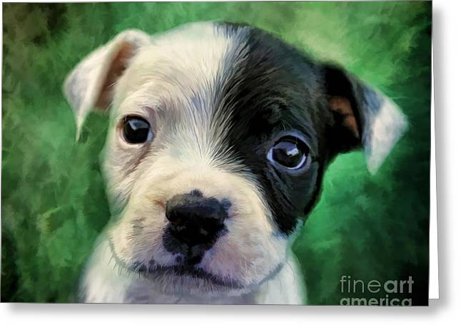 Staffie Greeting Cards - Nitro Greeting Card by Angelgold Art