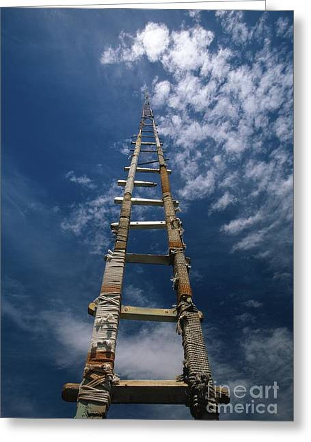 Limiting Ideas Greeting Cards - Ladder Greeting Card by Chris Selby