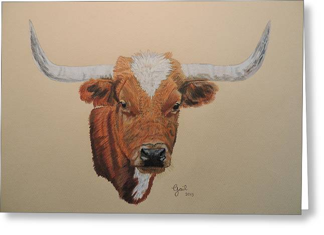 Steer Drawings Greeting Cards - No Bull Greeting Card by Gail Seufferlein