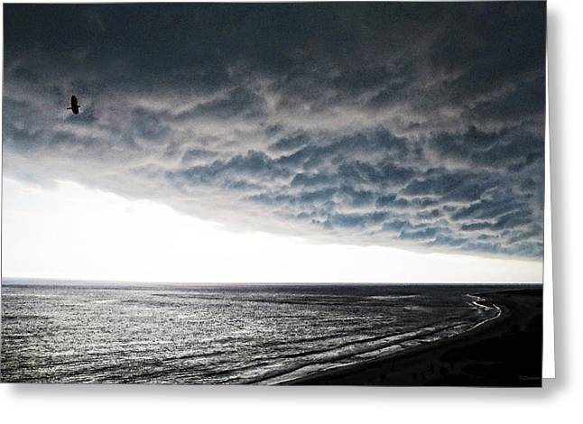 Dark Clouds. Greeting Cards - No Fear - Beach Art By Sharon Cummings Greeting Card by Sharon Cummings