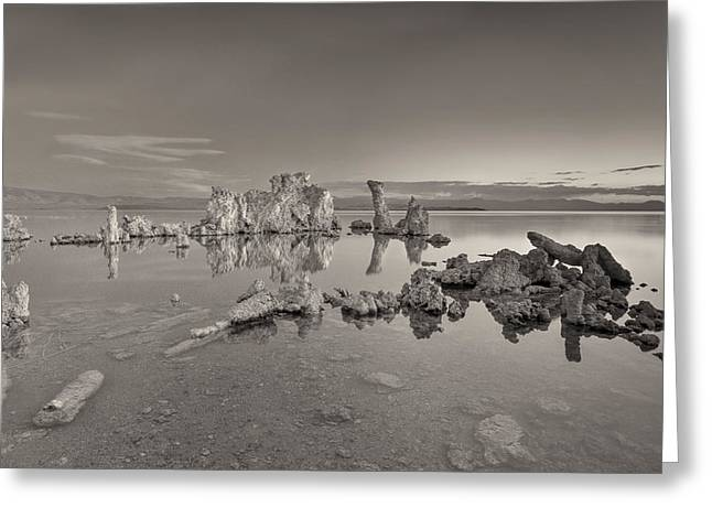 Sea Shore Greeting Cards - No Movement Greeting Card by Jon Glaser