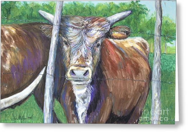 Barbed Wire Fences Pastels Greeting Cards - No Parole Greeting Card by Deb Miller