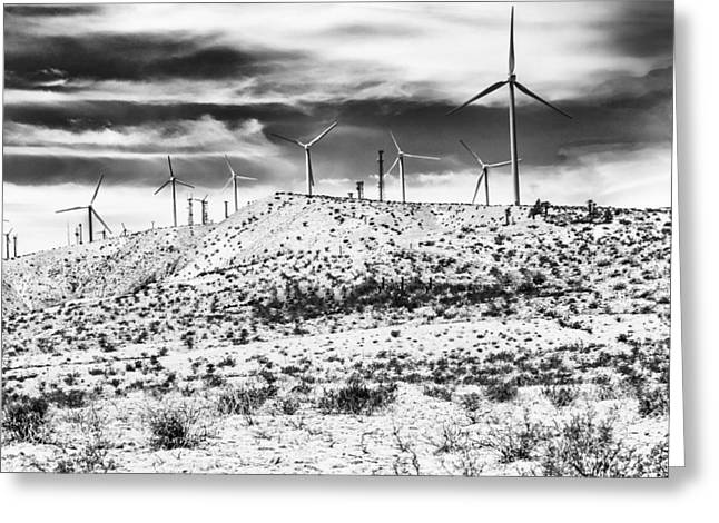 Storm Prints Greeting Cards - NO PLACE LIKE HOME 1 BW Palm Springs Greeting Card by William Dey