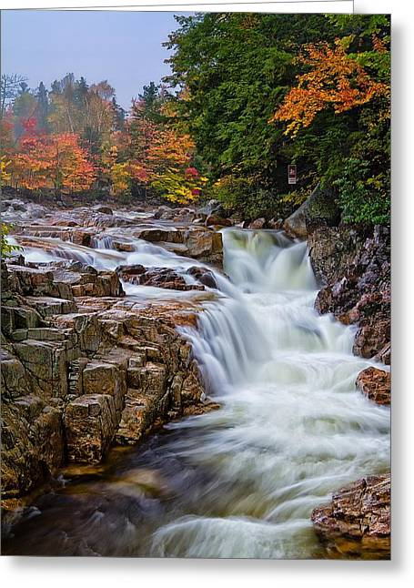 White River Scene Greeting Cards - No Swimming Rocky Gorge Albany NH Greeting Card by Jeff Sinon