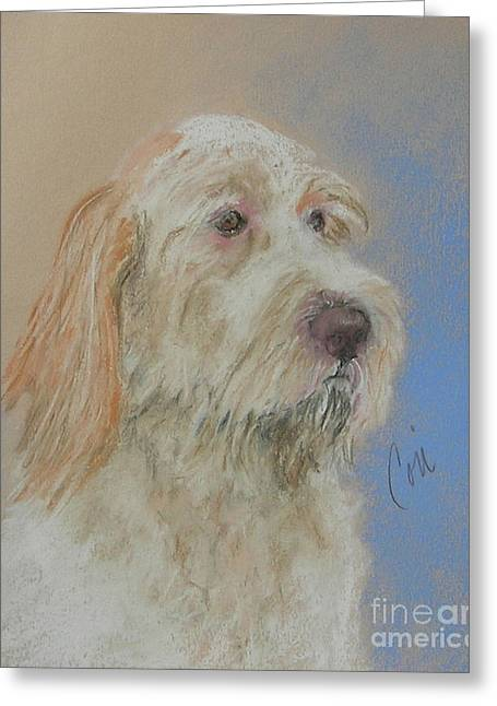 Recently Sold -  - Puppies Pastels Greeting Cards - Noble Hunter Greeting Card by Cori Solomon
