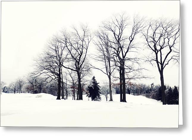 Bare Trees Digital Greeting Cards - Noir et Blanc Greeting Card by Natasha Marco