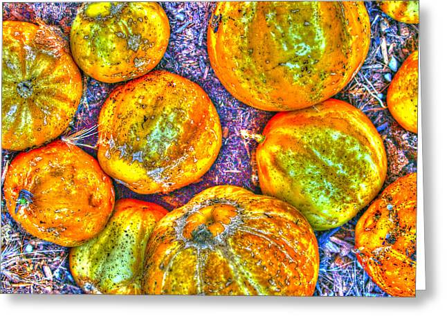 Joe Schofield Greeting Cards - Noisy Lemon Cucumbers Greeting Card by Joe Schofield