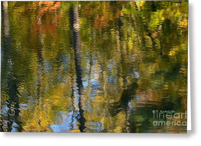 Fallscape Greeting Cards - Noland Trail Painting Greeting Card by Yvette Radcliffe