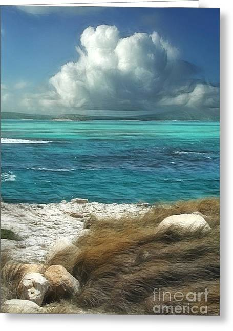 Panoramic Ocean Digital Greeting Cards - Nonsuch Bay Antigua Greeting Card by John Edwards