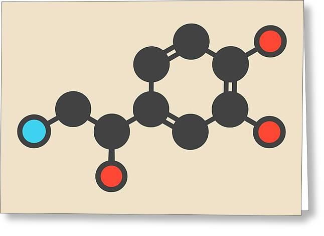 Noradrenaline Hormone Molecule Greeting Card by Molekuul