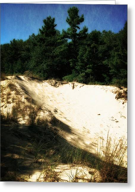 Seaside Digital Greeting Cards - Nordhouse Dunes Wilderness Greeting Card by Michelle Calkins