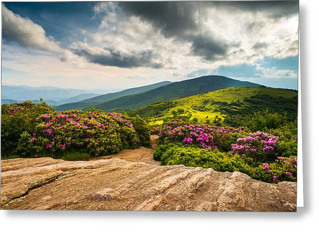Dave Greeting Cards - North Carolina Blue Ridge Mountains Landscape Appalachian Trail Greeting Card by Dave Allen