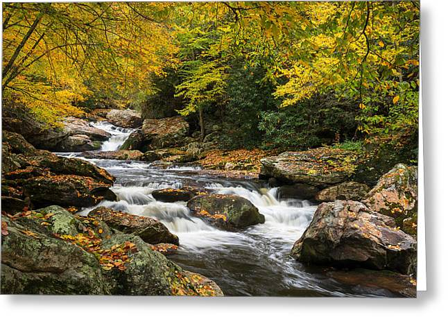 North Carolina Highlands Nc Autumn River Gorge Greeting Card by Dave Allen
