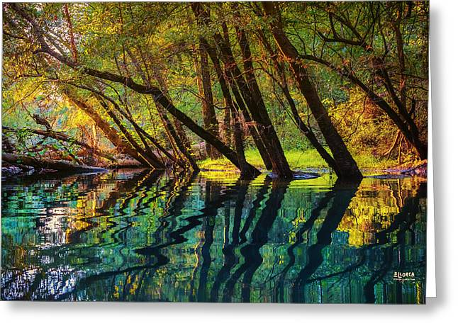 Tennessee River Greeting Cards - North Chick Impression Greeting Card by Steven Llorca