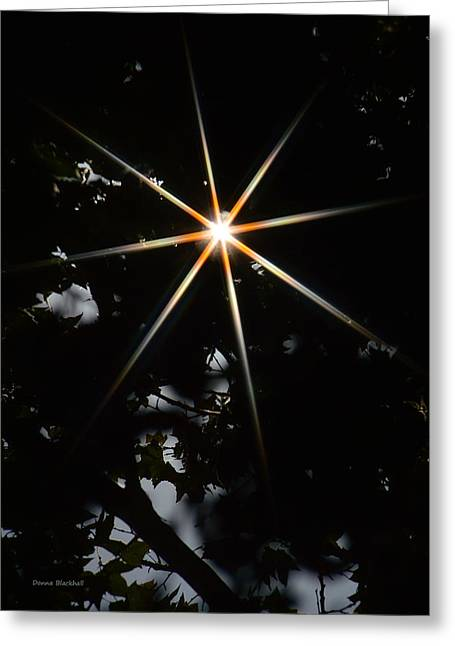 Star Gazing Greeting Cards - North Greeting Card by Donna Blackhall